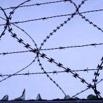 Les Français subissent un totalitarisme mou qui compromet leurs libertés
